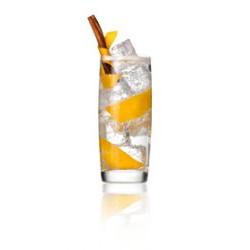 Gin&tonic orange cinamon.jpg