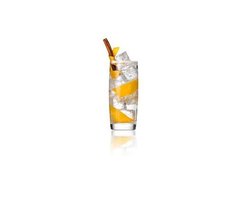 Gin&tonic orange .jpg